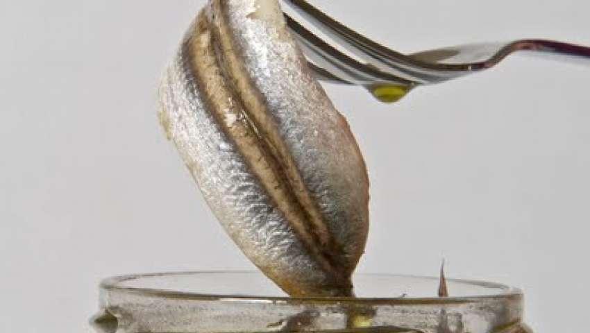 alici-sott-olio