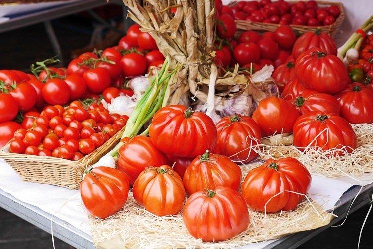 tipologia-pomodori-foodscovery-magazine